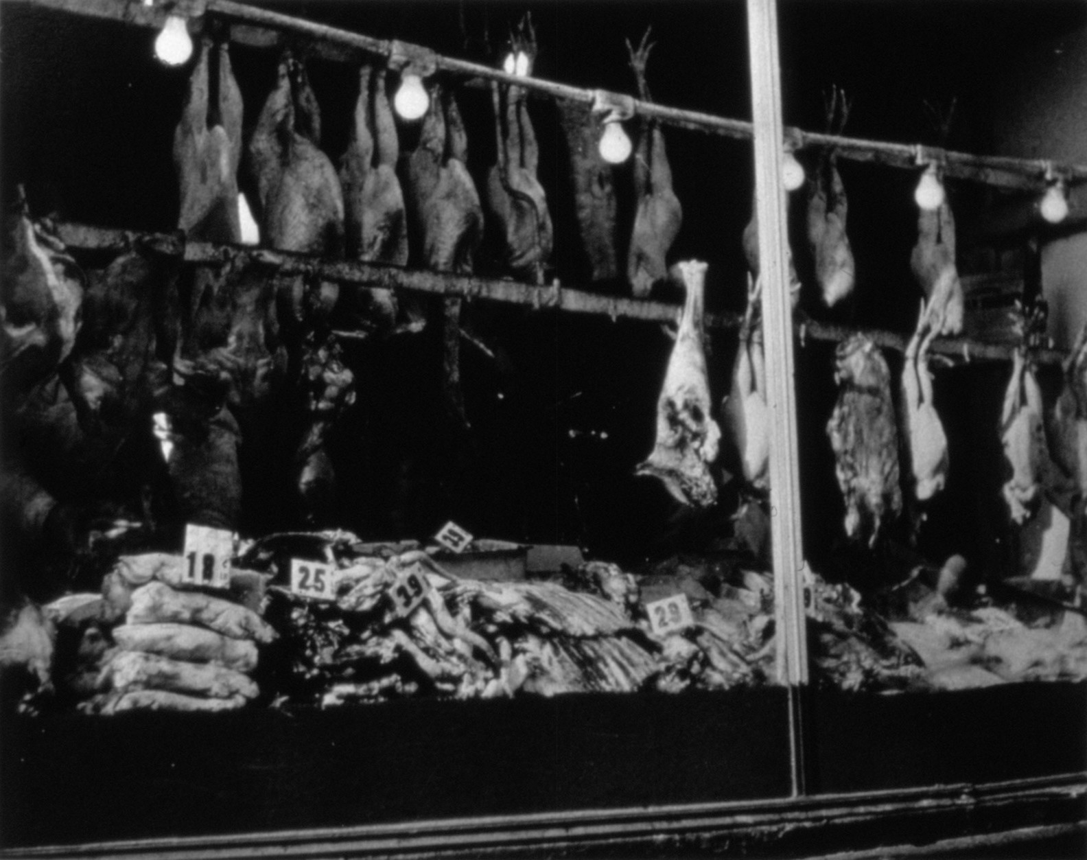 Butcher shop window with meat hanging circa 1900.